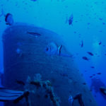 Malta, un paraíso submarino