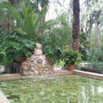 Elche, Oasis Mediterráneo